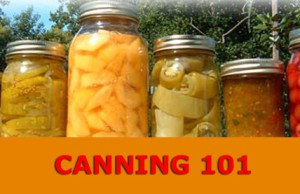 canning101