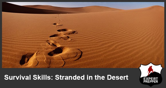 desert survival situation 10 astonishing desert survival tales  century sea captain, it was the  inhabitants of the sahara that made his situation as bad as it could be.